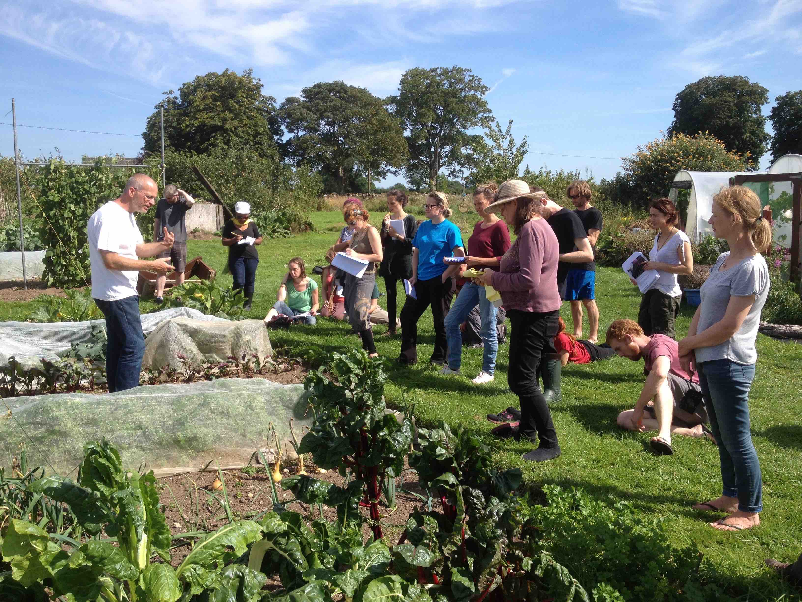Group Allotments