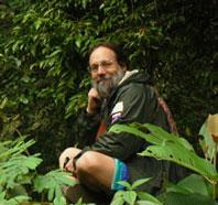 ab-brasil-forest-198